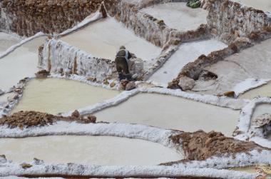 Trabalhador extraindo o sal das piscinas